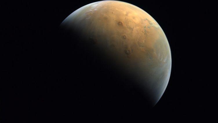 Une photo de la planète Mars prisepar l'Emirates eXploration Imagerle 14 février 2021. (UNITED ARAB EMIRATES SPACE AGENCY / AFP)