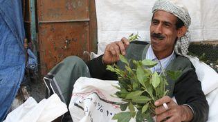 Un mâcheur de qat (khat) à Sana'a, Yemen, janvier 2009. (Ferdinand Reus /Wikimedia,CC BY-NC-SA)