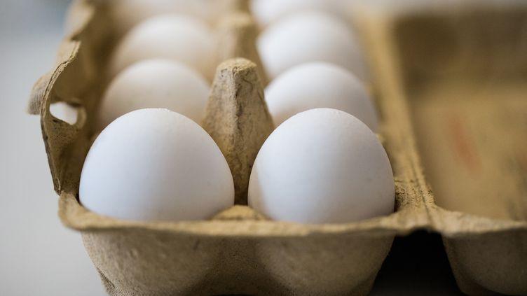 Treize lots d'œufs contaminés aufipronil ont été livrés à des établissements de l'ouest de la France, entre le 11 et le 26 juillet 2017. (MARCEL KUSCH / DPA / AFP)