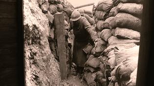 Les tranchées de 14-18, photographie exposée au musée Guerre et Paix  (France 3 Culturebox capture d'écran)