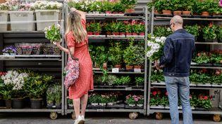 Les fleuristes et jardineries sont autorisées à rester ouvert pendant le confinement mis en place dans 16 département le 20 mars 2021. Photo d'illustration. (BERTRAND GUAY / AFP)