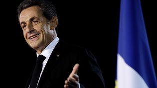 Nicolas Sarkozy prononce un discours lors d'un meeting à Andard (Maine-et-Loire), le 24 novembre 2014. (JEAN-SEBASTIEN EVRARD / AFP)