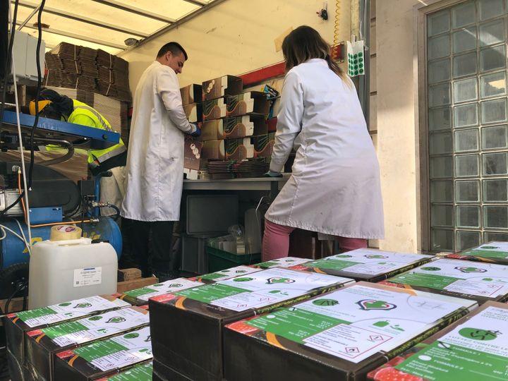 Des employés de la pharmacie Delpech, dans le 6e arrondissement de Paris, fabrique du gel hydroalcoolique et utilise des cubis de vin, le 31 mars 2020. (MATTHIEU MONDOLONI / RADIO FRANCE)