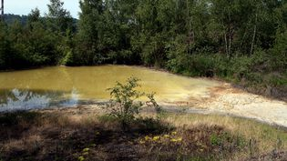 Un ancien intérimaire d'une entreprises sous-traitante pour ArcelorMittal à Florange affirme avoir déversé de l'acide dans le crassier du site pendant trois mois. (PIERRE HECKLER / MAXPPP)