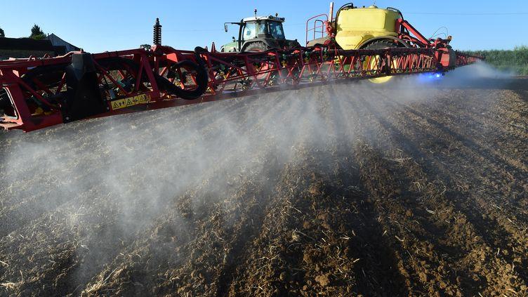 Un agriculteur vaporise du glyphosate sur ses champs, le 11 mai 2018 àPiace (Sarthe). (JEAN-FRANCOIS MONIER / AFP)