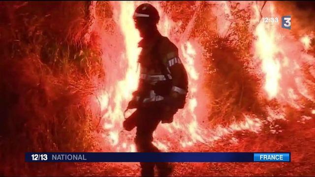 Pyrénées-Orientales : un incendie ravage 180 hectares de forêt