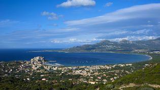 Le bateau où a été retrouvé l'œuvre, vendredi 31 juillet 2015, avait accosté au port de plaisance de Calvi (Haute-Corse). (MAXPPP)