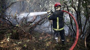 Un pompier éteint un incendie dans les montagnes de Bavella, en Corse, le 12 février 2020. (PASCAL POCHARD-CASABIANCA / AFP)