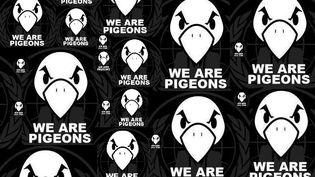 """La bannière des Pigeons détourne le graphisme et le slogan des Anonymous, """"We are legion"""". (FTVI)"""