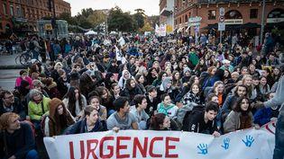 Marche pour le climat à Toulouse le 29 novembre 2019. (LILIAN CAZABET / HANS LUCAS)