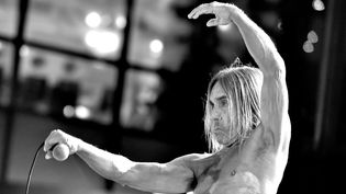 "Iggy Pop à l'avant-première de ""Ash vs Evil Dead"" en octobre 2015  (KEVIN WINTER / GETTY IMAGES NORTH AMERICA / AFP)"