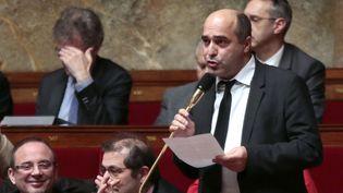 Le député écologiste de l'HéraultJean-Louis Roumegas, le 27 février 2013 à l'Assemblée nationale, à Paris. (JACQUES DEMARTHON / AFP)