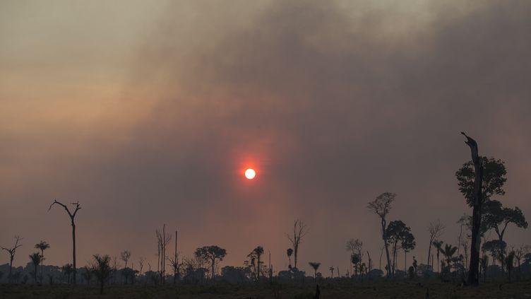 Le coucher de soleil met en évidence le rideau de fumée d'un incendie dans une zone de la jungle amazonienne dans la région d'Alvorada da Amazonia, à Novo Progresso au Brésil. (FERNANDO SOUZA / AGIF)