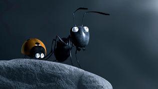 """""""Minuscule, la vallée des fourmis perdus"""" en attendant les César  (Le Pacte)"""