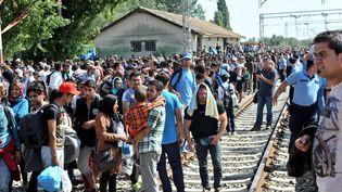 Des migrants attendent le long d'une voie ferrée à la frontière entre la Serbie et la Croatie, le 17 septembre 2015. (ELVIS BARUKCIC / AFP)
