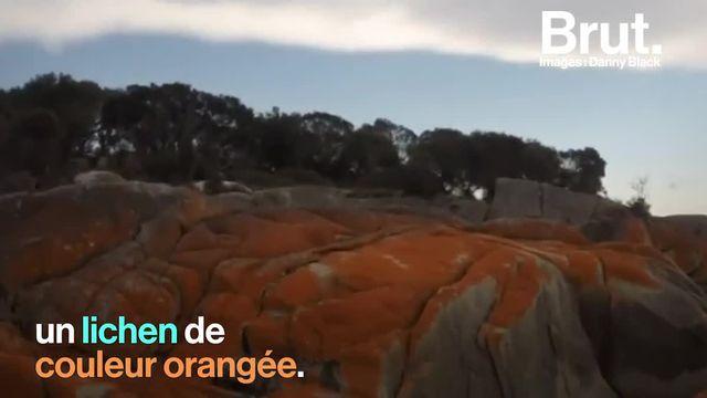 Piscines naturelles, roches sculptées par des milliards d'années d'érosion... Voici 3 paysages fabuleux à découvrir en Australie.