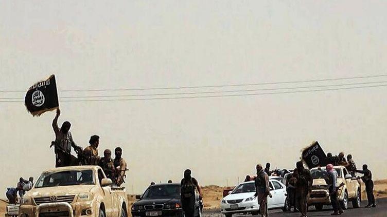 Capture d'écran d'un site jihadiste,montrant des combattants de l'Etat islamique dans la région irakienne de Tikrit, et leur drapeau. (- / WELAYAT SALAHUDDIN / AFP)