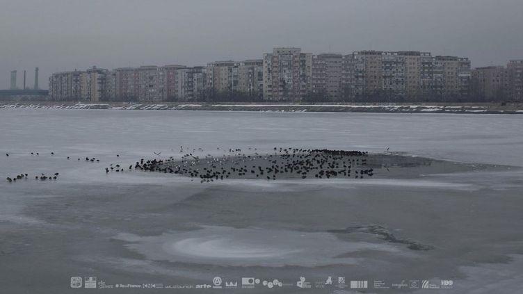 Affiche du film «Sieranevada» de Cristi Puiu, en compétition pour la Palme d'Or de la 69e édition du Festival de Cannes (DR)