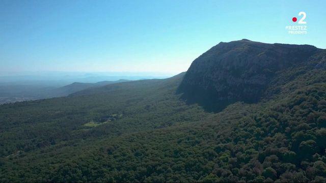 Destination France : à la découverte de la Sainte-Baume, un paradis pour randonneurs