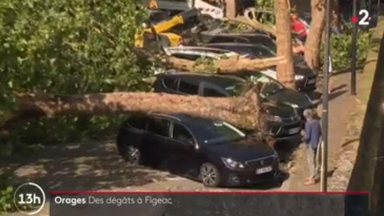 La grêle s'est abattue sur Figeac dans le Tarn, le 10 août 2020. (FRANCE 2)