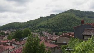 La commune de Mazamet, dans le Tarn, lance un appel à l'heure du déconfinement pour tenter d'attirer des citadins en mal de nature. (FRANCE 3)