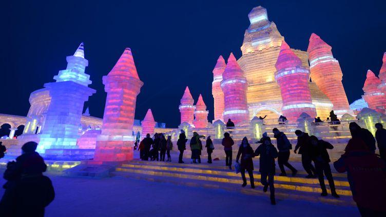 Festival de glace de Harbin (Chine)  (Wang Kai/Xinhua/AFP)