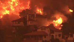 Grèce : l'île d'Eubée continue d'être ravagée par les flammes (France 3)