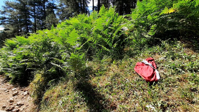Pour trouver la bergerie de Tolla, il faut repérer le slip rouge en bordure du GR 20, perdu par un randonneur. Elle est juste derrière. (BENJAMIN ILLY / RADIO FRANCE)