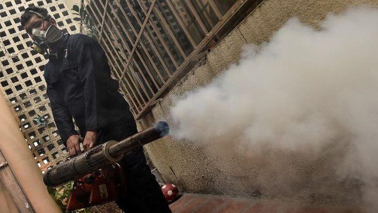Le 28 janvier 2016, un employé diffuse un insecticide dans un jardin de Caracas afin de lutter contre le moustique aedes porteur du virus Zika. (AFP)