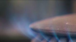 La facture d'électricité et de gaz et l'un des sujets épineux des dernières semaines. Face à la flambée des prix, les Français semblent démunis mais c'est également le cas de certains fournisseurs qui ont dû mettre la clé sous la porte. (CAPTURE ECRAN FRANCE 2)