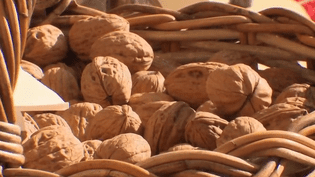 Des noix du Pérogord (CAPTURE ECRAN FRANCE 2)