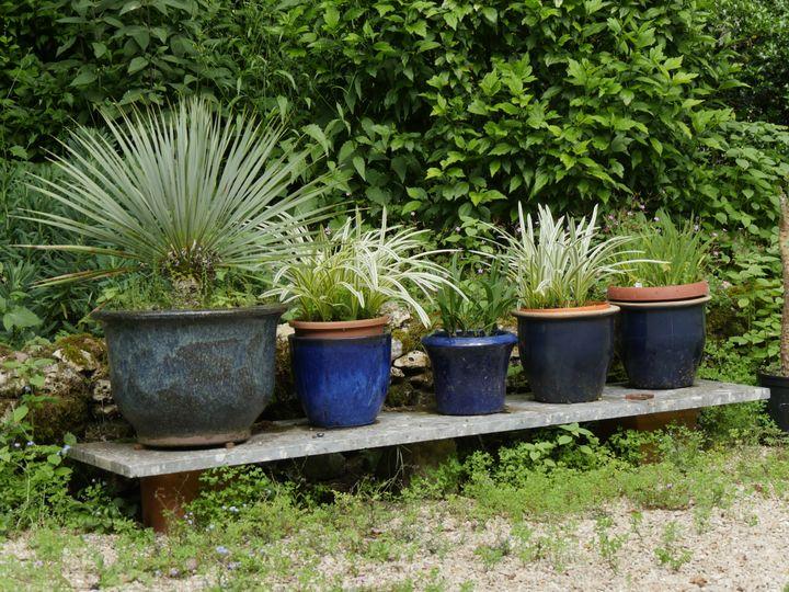 Plantes en pot au Jardin de la Parmelie (Seine-et-Marne). (ISABELLE MORAND / RADIO FRANCE / FRANCE INFO)
