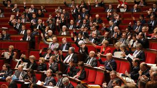 Les députés votent à main levée l'articlesur la prolongation de l'état d'urgence pour trois mois, jeudi 19 novembre 2015. (FRANÇOIS GUILLOT / AFP)