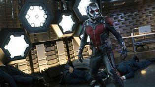 "Paul Rudd dans ""Ant-Man"" dePeyton Reed  (Marvel 2014)"