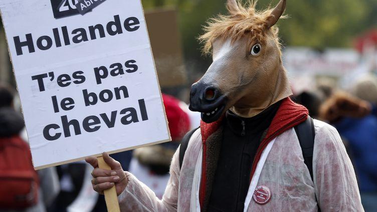 Un manifestant défilant dans les rues de Paris contre la hausse de la TVA pour les centres équestres, le 24 novembre 2013. (THOMAS SAMSON / AFP)