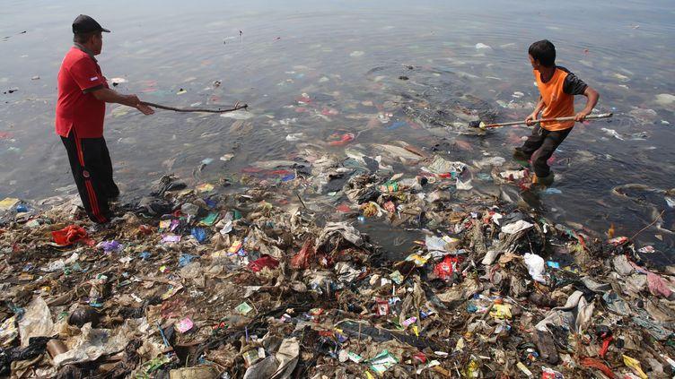 Des hommes ramassent des ordures dans la baie de Lampung, le 21 février 2019, en Indonésie. (PERDIANSYAH / AFP)