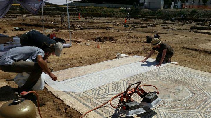 """Mosaïque de 13m² parfaitement conservée, découverte à Sainte-Colombe dans le Rhône. Elle fait partie de la """"mini Pompéi"""". (Céline Loizeau / RADIOFRANCE)"""