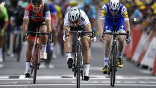Le slovaque Peter Sagan a remporté la 3e étape du Tour de France, le 3 juillet 2017, entre Verviers (Belgique) et Longwy (France). (JEFF PACHOUD / AFP)