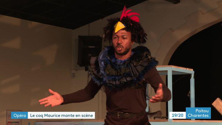 """L'histoire du coq Maurice à l""""île d'Oléron portée à l'opéra  (France 3)"""