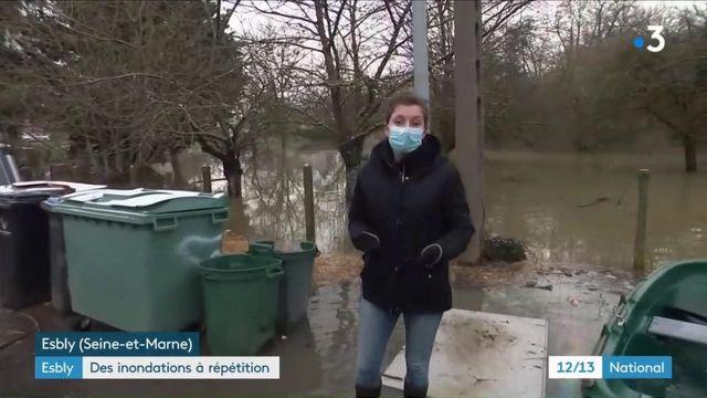 Inondations : les habitants de Seine-et-Marne portent un regard inquiet sur la Marne
