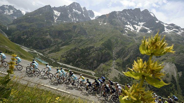 Le peloton du Tour de France dans les Alpes (LIONEL BONAVENTURE / AFP)