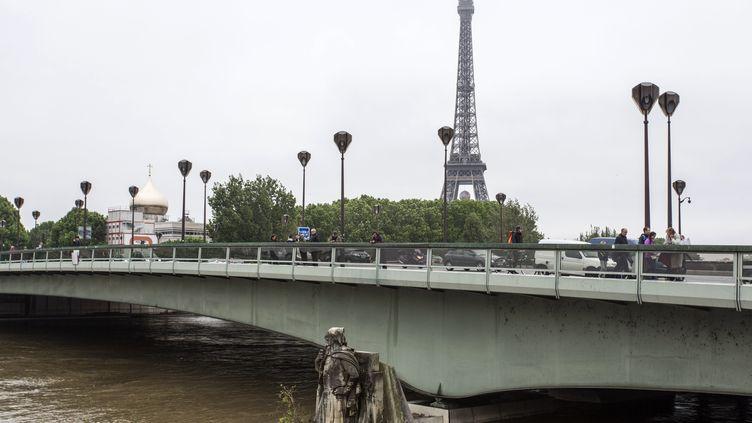 LeZouave du pont de l'Alma, le 2 juin 2016. (GEOFFROY VAN DER HASSELT / AFP)