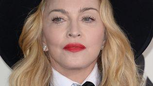 Madonna invite les Pussy Riot sur scèneau concert organisé par Amnesty International le 5 février à New York  (ROBYN BECK / AFP)