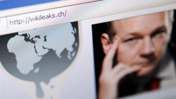 Le site WikiLeaks et le visage de son fondateur Julian Assange. (AFP - Fabrice Coffrini)