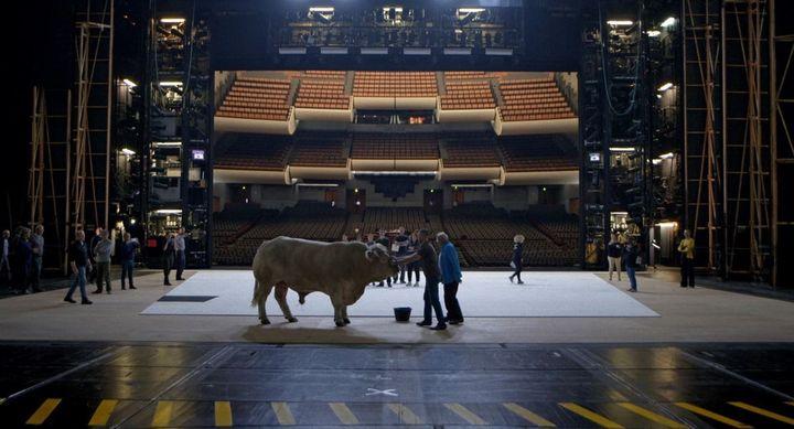 """Un taureau sur la scène de l'Opéra de Paris, dans la production de """"Moïse et Aaron"""". Image tirée du film """"L'Opéra"""" de Jean-Stéphane Bron. (FRENETIC FILMS)"""