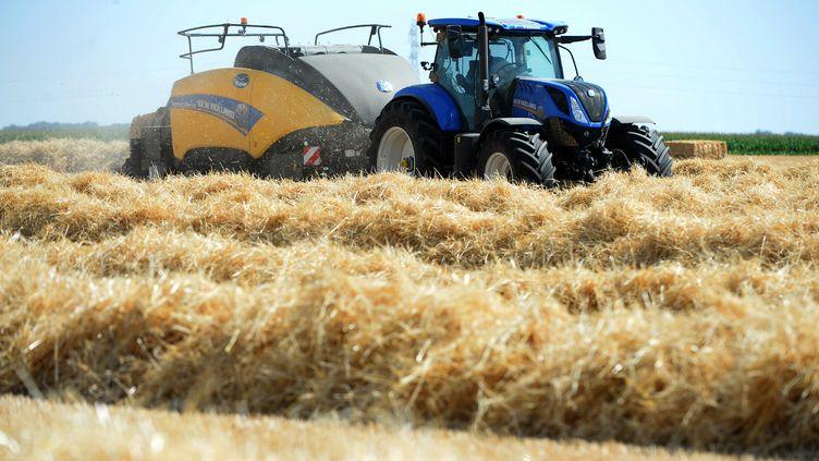 Un agriculteur dans son champ, le 23 juillet 2019 à Guigneville (Essonne). (JEAN-FRANCOIS MONIER / AFP)
