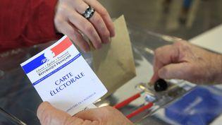 Les Républicains et leurs alliés arrivent en tête des intentions de vote pour le premier tour des élections régionales de décembre, selon un sondage Elabe pour Atlantico publié le 17 octobre 2015. (GODONG / BSIP / AFP)