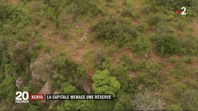 Kenya : la capitale menace une réserve