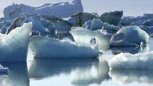 Des icebergs dans le fjord Sermilik, au Groenland, le 12 août 2018. (PHILIPPE ROY / AFP)