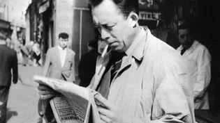 Albert Camus en train de lire un journal à Paris en 1959. (STF / AFP)